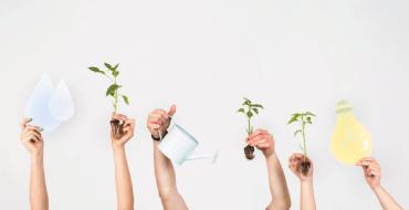 Sustentabilidade: saiba como ajudar o planeta no seu dia a dia